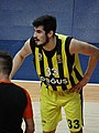 Nikola Kalinic (basketball) 33 Fenerbahçe Men's Basketball 20180126 (3).jpg