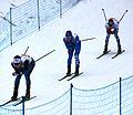 Nordic World Ski Championships 2017-02-26 (33181163031).jpg