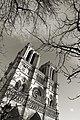 Notre-Dame de Paris, February 2013.jpg