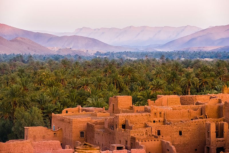 File:Oasis in the Draa Valley.jpg