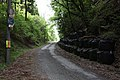 Old Route 173-02.jpg