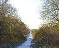 Old railway, Marton Moor - geograph.org.uk - 1109760.jpg
