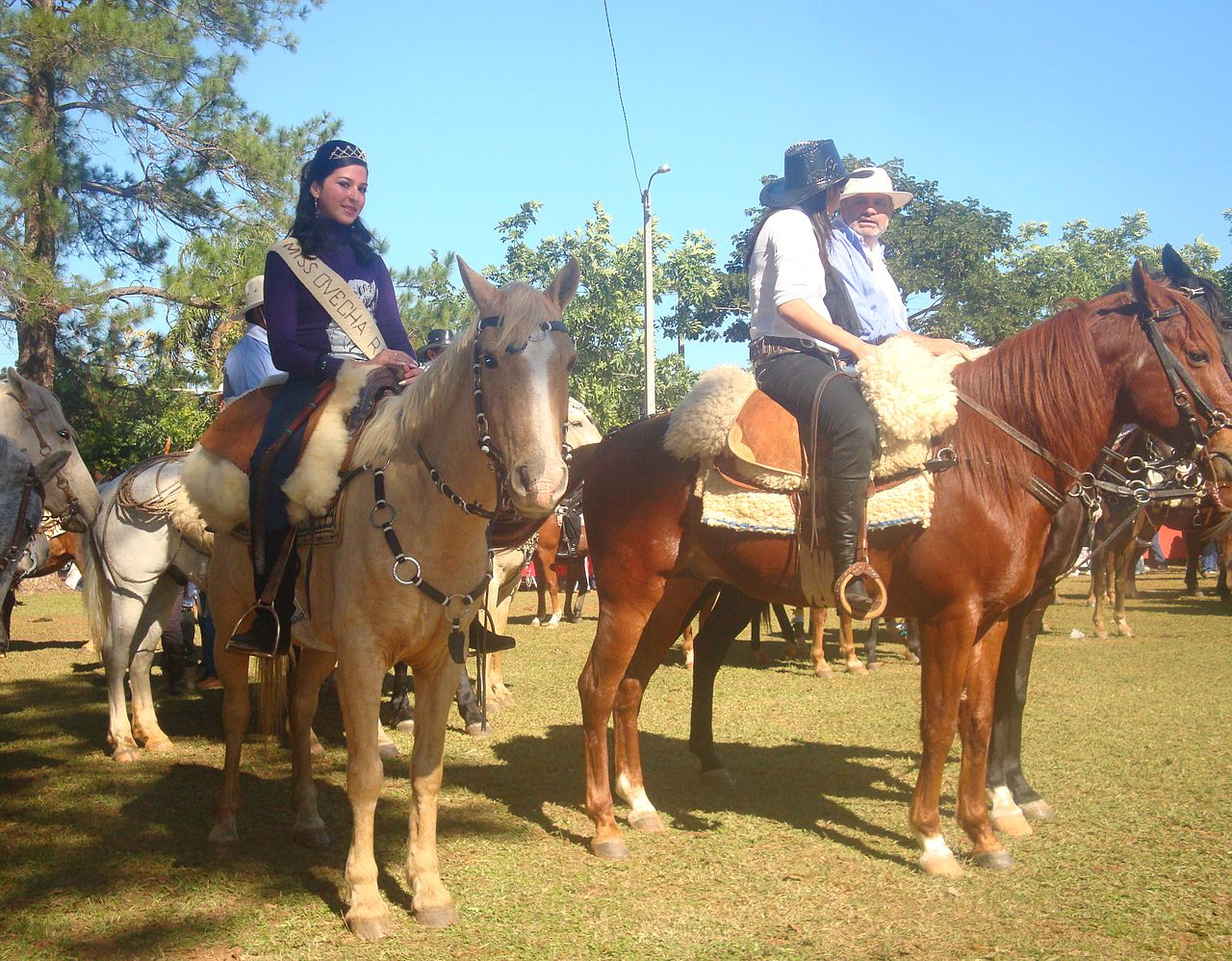 Ovecha Ragué Festival