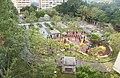 Overlook Shek Yam Lei Muk Road Park.jpg