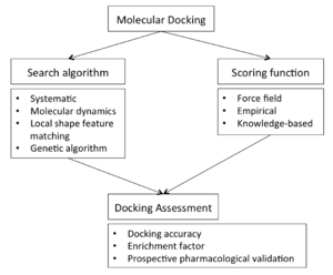 Docking (molecular) - Docking flow-chart overview