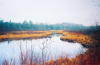 Chequamegon-Nicolet National Forest - Image: P1000125