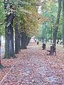 Park Miejski w Kielcach (43) (jw14).JPG