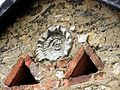 Parzymiechy amonit w ścianie budynku 20110502 kpjas.jpg