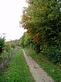 Path along the edge of Magog Down - geograph.org.uk - 65129.jpg
