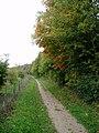 Path along the edge of Magog Down - geograph.org.uk - 65129.jpg