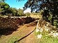 Pedra seca i alzina al pla de Labritja - panoramio (1).jpg