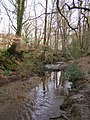 Penerley Water on the edge of Abbotstanding Wood, New Forest - geograph.org.uk - 145246.jpg