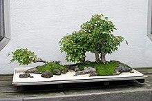 Zen Sai Japanese Restaurant Katoomba Nsw