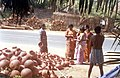 People purchase earthen pots for Pongal Celebrations at Pulianchavadi near Pondicherry.jpg