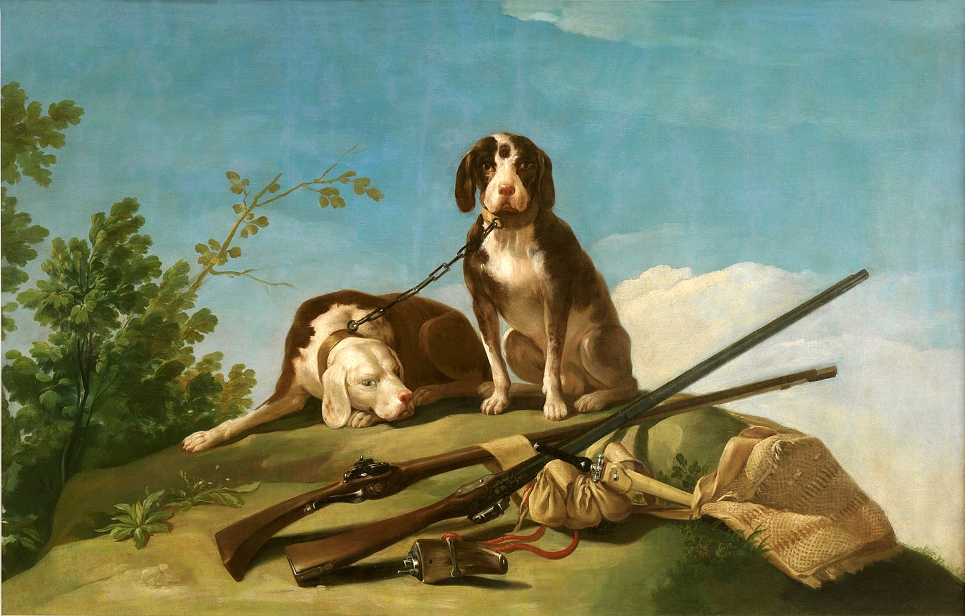 Dogs and hunting gear