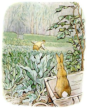 PeterRabbit22.jpg