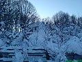 Petrovo Selo - panoramio (27).jpg
