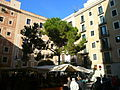 Pi de la plaça del Pi P1100929.JPG