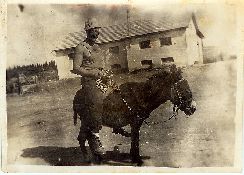 אברהם דנון רוכב על החמור