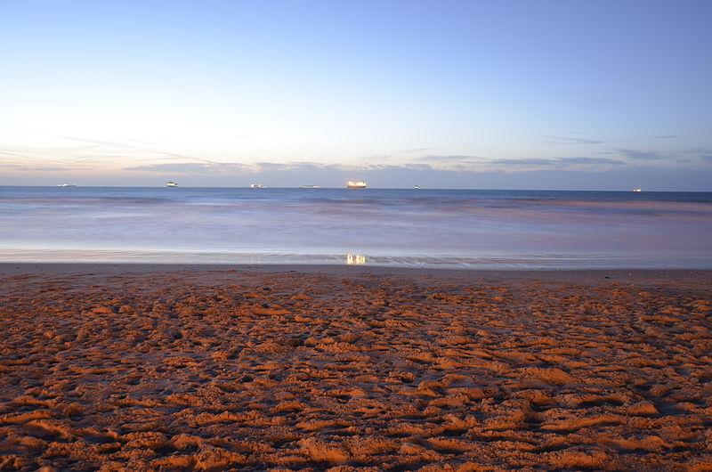 חוף הים