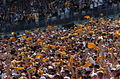 Pittsburgh Steeler fans 11 Sept 2005.jpg