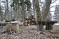 Plāteres pilskalns, Madlienas pagasts, Ogres novads, Latvia - panoramio (4).jpg