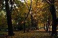 Planty Park, Old Town, Krakow, Poland.jpg