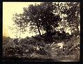 Pluschow, Wilhelm von (1852-1930) - n. 7941 recto - Olevano Romano - Serpentina.jpg