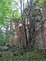 Pniów, pozostałości pałacu (8).JPG