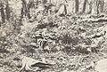 Pobojowisko pod Kozinkiem 02, 1915.jpg
