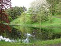 Pond at Ferniehaugh - geograph.org.uk - 174063.jpg