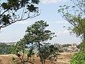 Pondok Hijau, Sersan Bajuri, Kota Bandung - panoramio (1).jpg