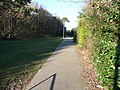 Poole , Grass, Path and Hedge - geograph.org.uk - 1750227.jpg
