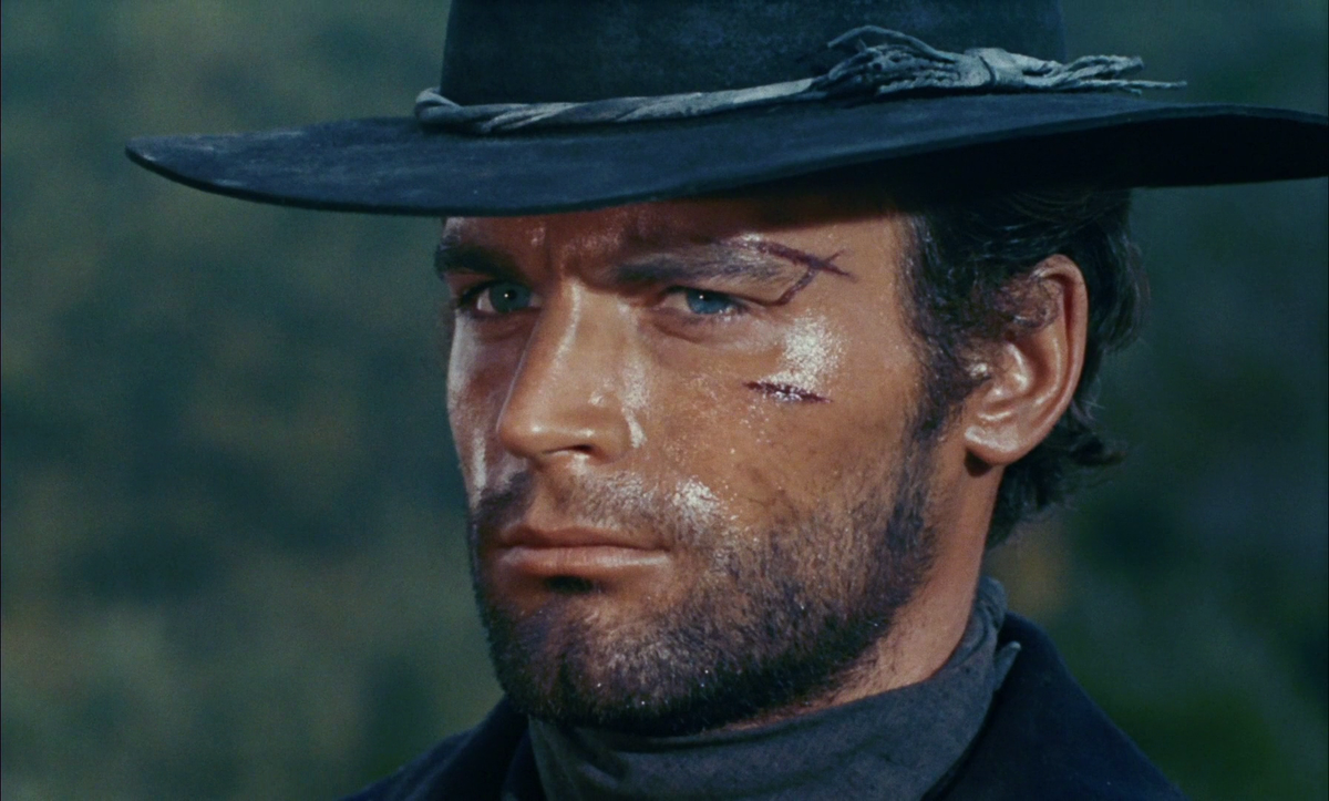 Terence Hill Wikipedie