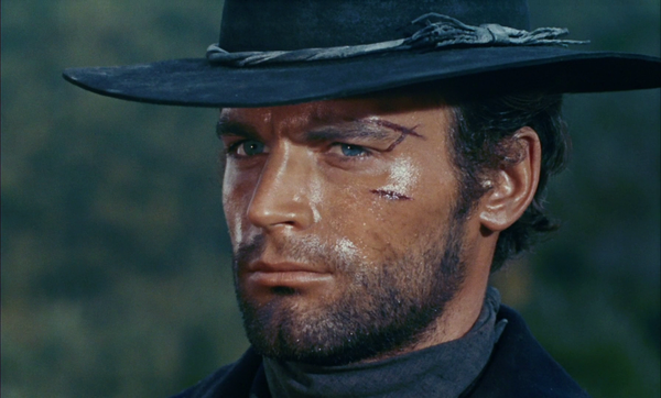 Photo Terence Hill via Wikidata