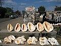 Pretty shells - panoramio.jpg