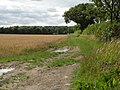 Public footpath to West Wickham and Burton End - geograph.org.uk - 1428286.jpg