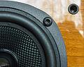 Quad Lite loudspeaker detail.jpg