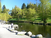 Photo of a duck pond at the w:Queen Elizabeth Park.