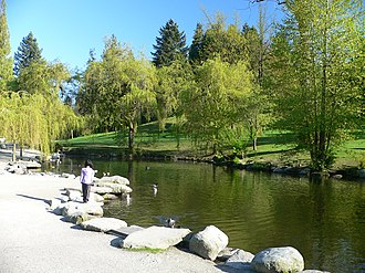 Duck pond - A duck pond in the Queen Elizabeth Park