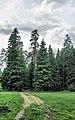 Ramensky District, Moscow Oblast, Russia - panoramio - Andris Malygin (26).jpg