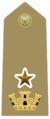 Rank insignia of capitano con funzioni di grado superiore of the Army of Italy (1973).png