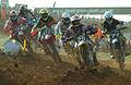 Red Bull FIM Motocross of Nations 2008 race.jpg