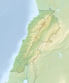 Relief Map: Lebanon