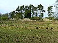 Remains of Lochore House - geograph.org.uk - 1691975.jpg