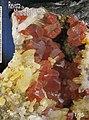 Revista de Minerales 1.jpg