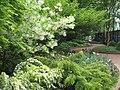 Ripley Garden in April (17612725112).jpg