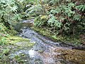 River Lyd in Lydford - geograph.org.uk - 1020810.jpg