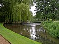 River Piddle, Athelhampton House - geograph.org.uk - 1113365.jpg