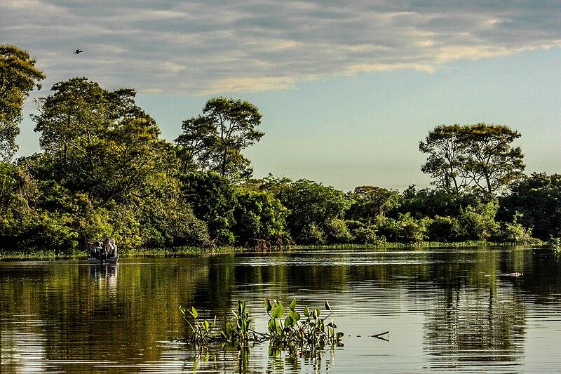 pantanal clima